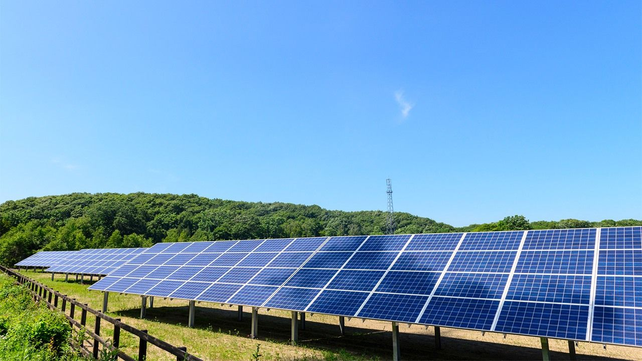Make Your Search For The Best Solar Companies In Sydney, Easy And Stress-free